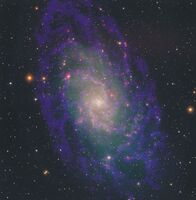 M33 in Radio and Optical