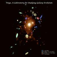 Virgo, A Laboratory for Studying Galaxy Evolution