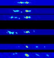 X-Ray Nova GRO J1655-40
