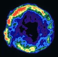 Tycho's Supernova Remnant (3c10)