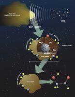 Shock Front Molecule Production